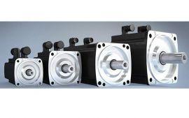 Servo motors baumuller DSC1-045, DSC1-056, DSC1-071, DSC1-100, DS2-100, DS2-132, DS2-160, DS2-200, baumuller vietnam